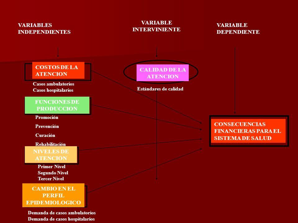 VARIABLES INDEPENDIENTES VARIABLE INTERVINIENTE VARIABLE DEPENDIENTE COSTOS DE LA ATENCION CALIDAD DE LA ATENCION FUNCIONES DE PRODUCCION NIVELES DE ATENCION CAMBIO EN EL PERFIL EPIDEMIOLOGICO CONSECUENCIAS FINANCIERAS PARA EL SISTEMA DE SALUD Promoción Prevención Curación Rehabilitación Casos ambulatorios Casos hospitalarios Estándares de calidad Primer Nivel Segundo Nivel Tercer Nivel Demanda de casos ambulatorios Demanda de casos hospitalarios