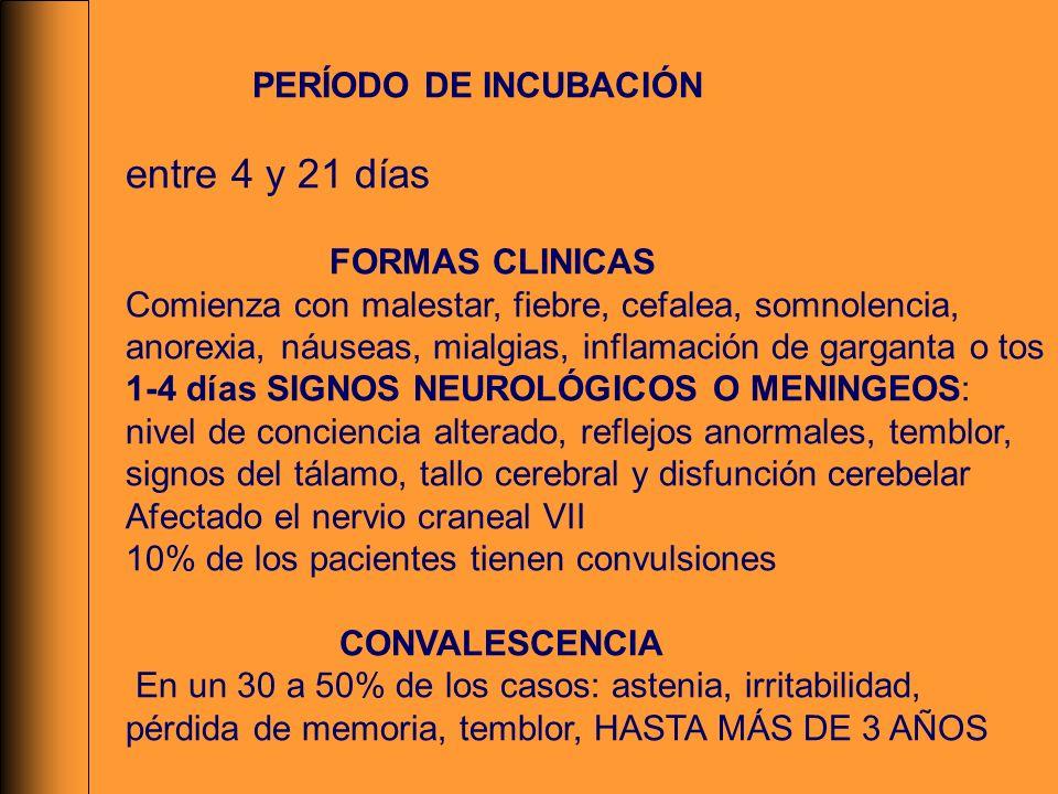 PERÍODO DE INCUBACIÓN entre 4 y 21 días FORMAS CLINICAS Comienza con malestar, fiebre, cefalea, somnolencia, anorexia, náuseas, mialgias, inflamación