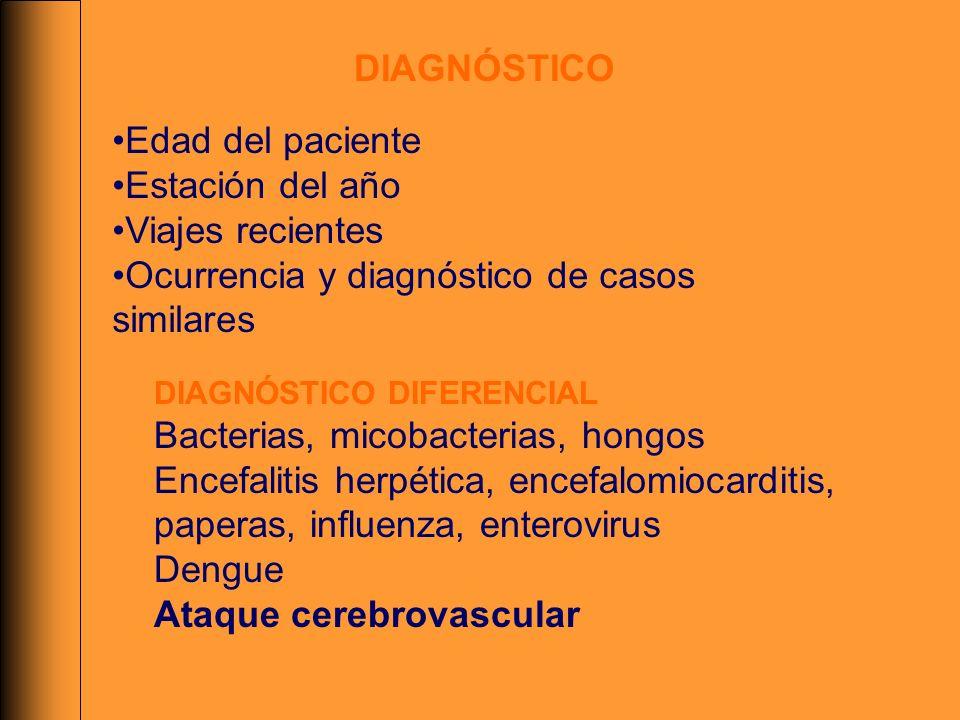 DIAGNÓSTICO Edad del paciente Estación del año Viajes recientes Ocurrencia y diagnóstico de casos similares DIAGNÓSTICO DIFERENCIAL Bacterias, micobac