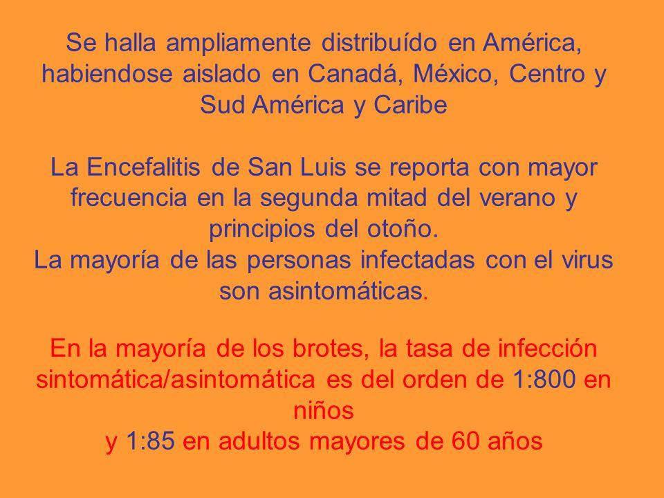 Se halla ampliamente distribuído en América, habiendose aislado en Canadá, México, Centro y Sud América y Caribe La Encefalitis de San Luis se reporta