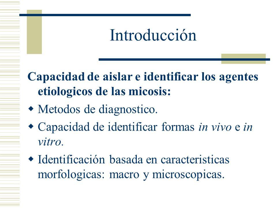 Introducción Capacidad de aislar e identificar los agentes etiologicos de las micosis: Metodos de diagnostico. Capacidad de identificar formas in vivo