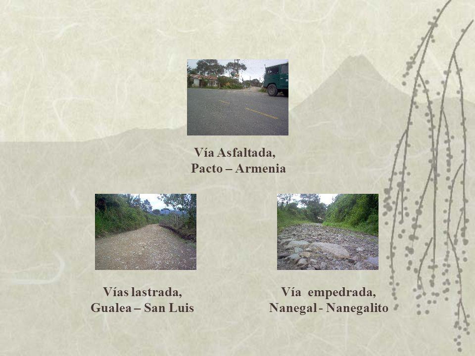 Vía Asfaltada, Pacto – Armenia Vías lastrada, Gualea – San Luis Vía empedrada, Nanegal - Nanegalito