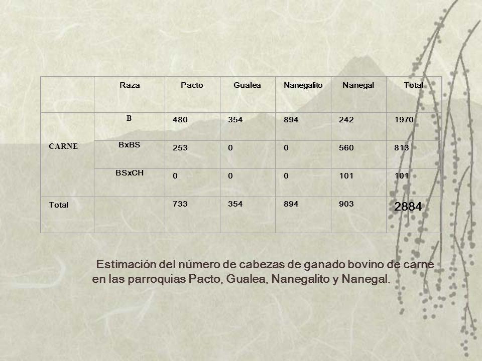 Estimación del número de cabezas de ganado bovino de carne en las parroquias Pacto, Gualea, Nanegalito y Nanegal. RazaPactoGualeaNanegalitoNanegalTota