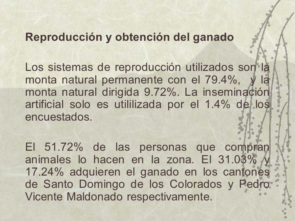 Reproducción y obtención del ganado Los sistemas de reproducción utilizados son la monta natural permanente con el 79.4%, y la monta natural dirigida