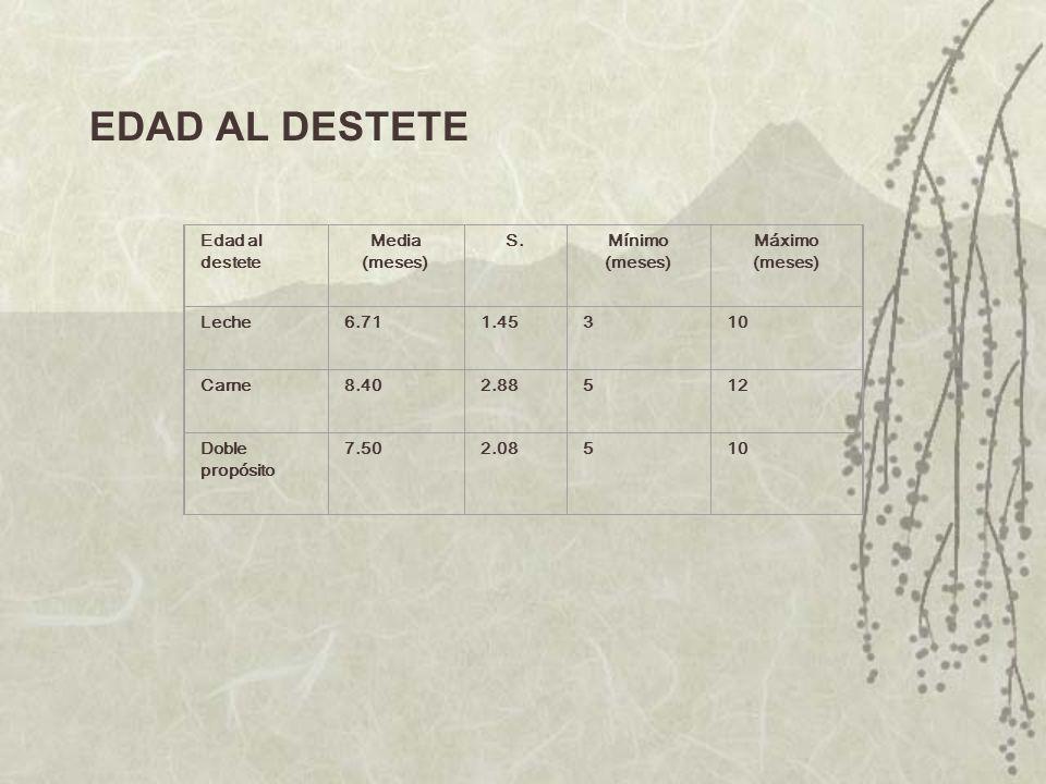EDAD AL DESTETE Edad al destete Media (meses) S.Mínimo (meses) Máximo (meses) Leche6.711.45310 Carne8.402.88512 Doble propósito 7.502.08510