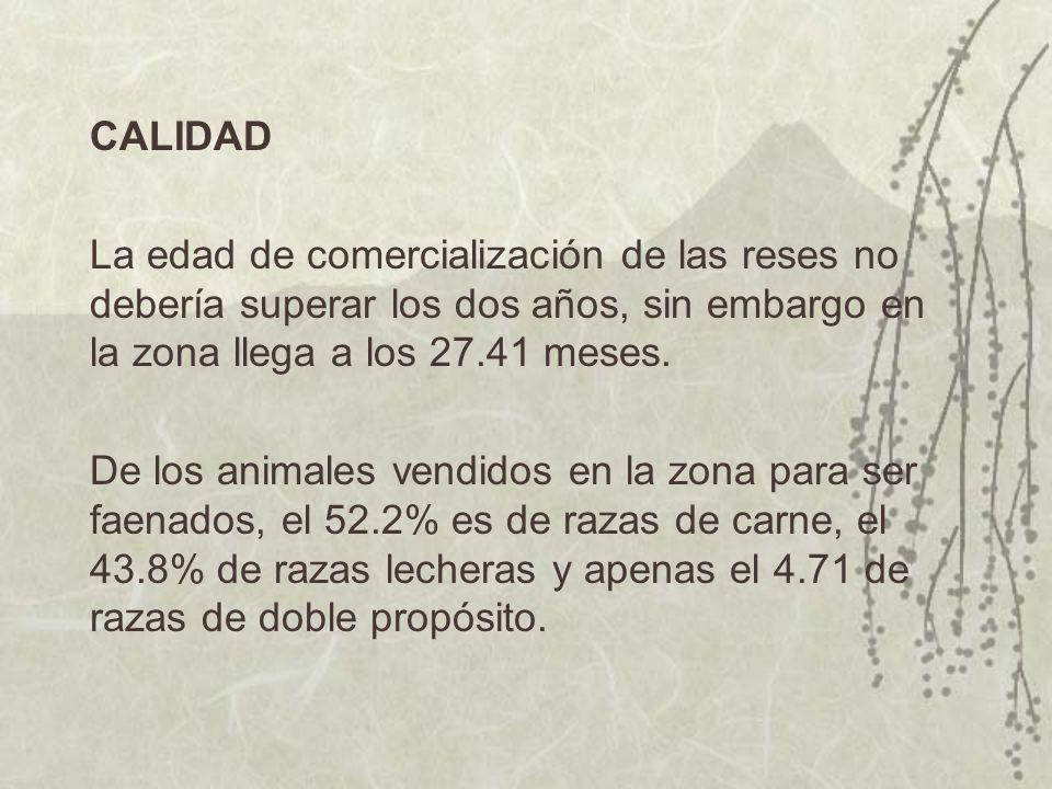 CALIDAD La edad de comercialización de las reses no debería superar los dos años, sin embargo en la zona llega a los 27.41 meses. De los animales vend