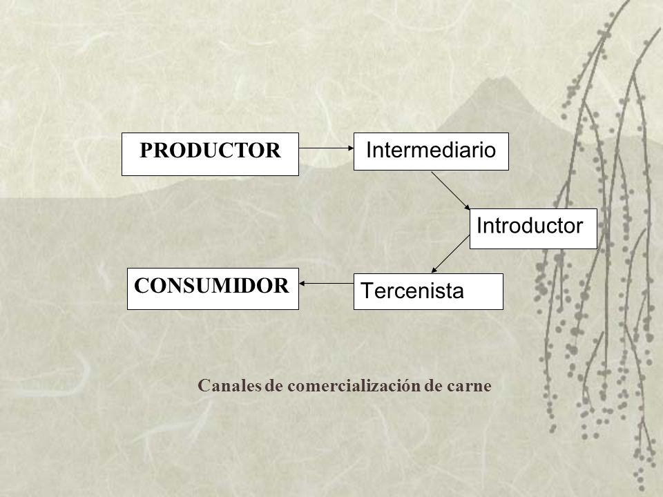 PRODUCTOR CONSUMIDOR Intermediario Introductor Tercenista Canales de comercialización de carne
