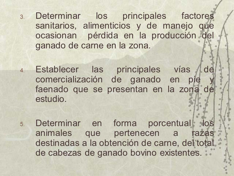 3. Determinar los principales factores sanitarios, alimenticios y de manejo que ocasionan pérdida en la producción del ganado de carne en la zona. 4.