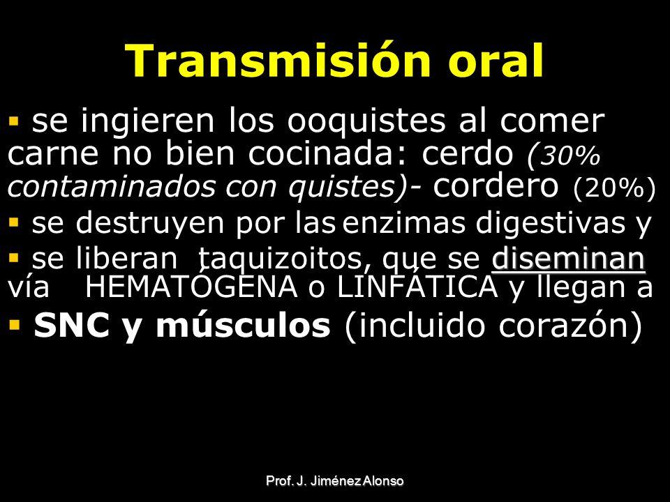 Prof. J. Jiménez Alonso Transmisión oral se ingieren los ooquistes al comer carne no bien cocinada: cerdo ( 30% contaminados con quistes)- cordero (20