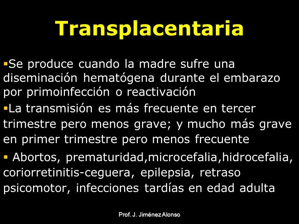 Prof. J. Jiménez Alonso Transplacentaria Se produce cuando la madre sufre una diseminación hematógena durante el embarazo por primoinfección o reactiv
