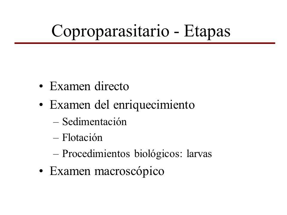 Examen directo en fresco