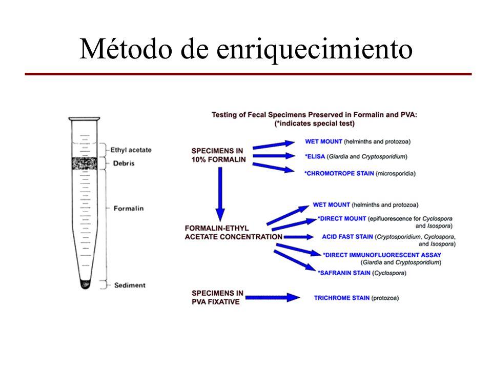 Métodos para el estudio de parásitos hemotesiduales Examen en fresco Frotis coloreados Gota espesa Centrifugación diferencial Xenodiagnóstico Histopatología Cultivo Inoculación