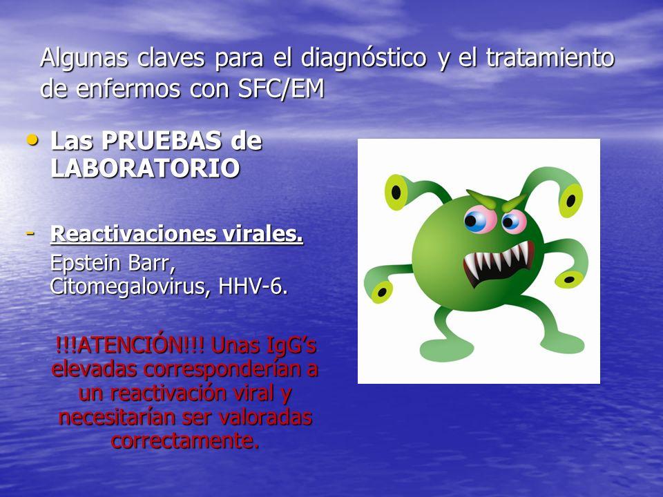 Algunas claves para el diagnóstico y el tratamiento de enfermos con SFC/EM Las PRUEBAS de LABORATORIO Las PRUEBAS de LABORATORIO - Reactivaciones virales.