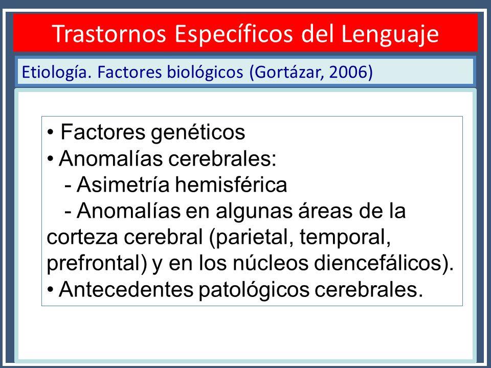Etiología. Factores biológicos (Gortázar, 2006) Diagnóstico TEL Trastornos Específicos del Lenguaje Factores genéticos Anomalías cerebrales: - Asimetr