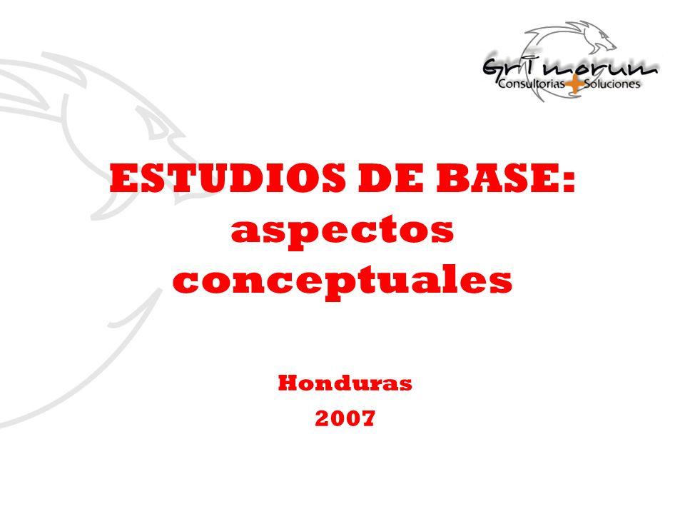 ESTUDIOS DE BASE: aspectos conceptuales Honduras 2007