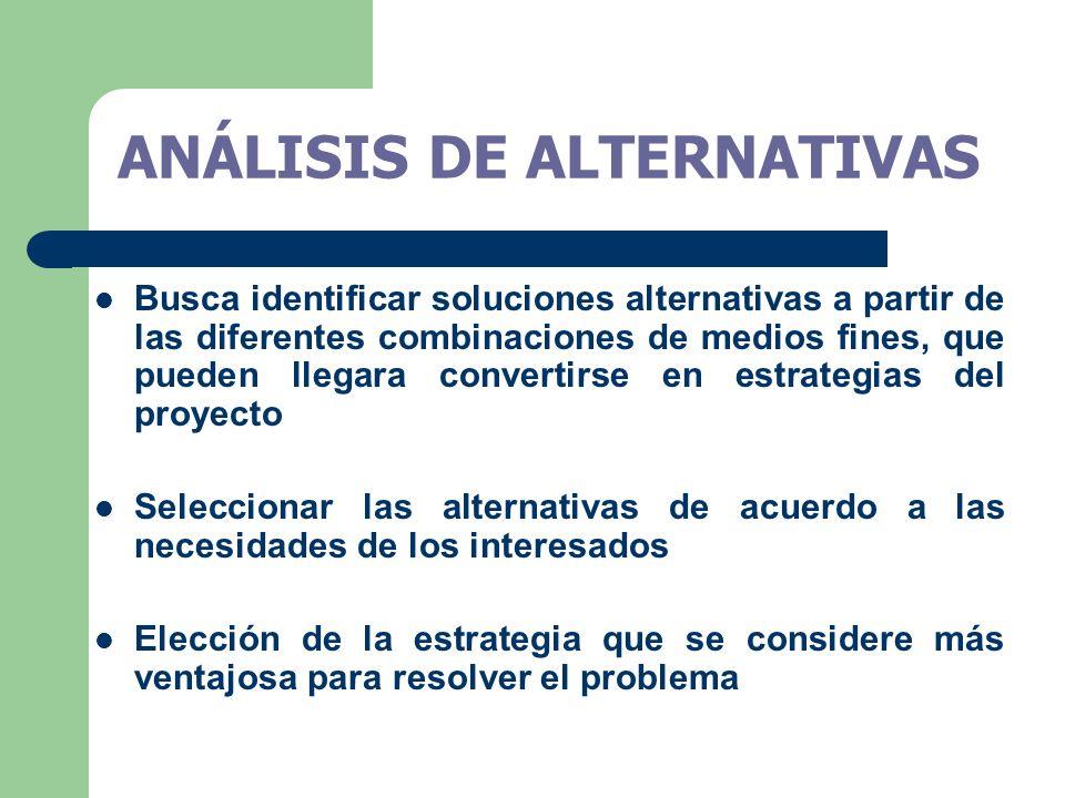 Busca identificar soluciones alternativas a partir de las diferentes combinaciones de medios fines, que pueden llegara convertirse en estrategias del