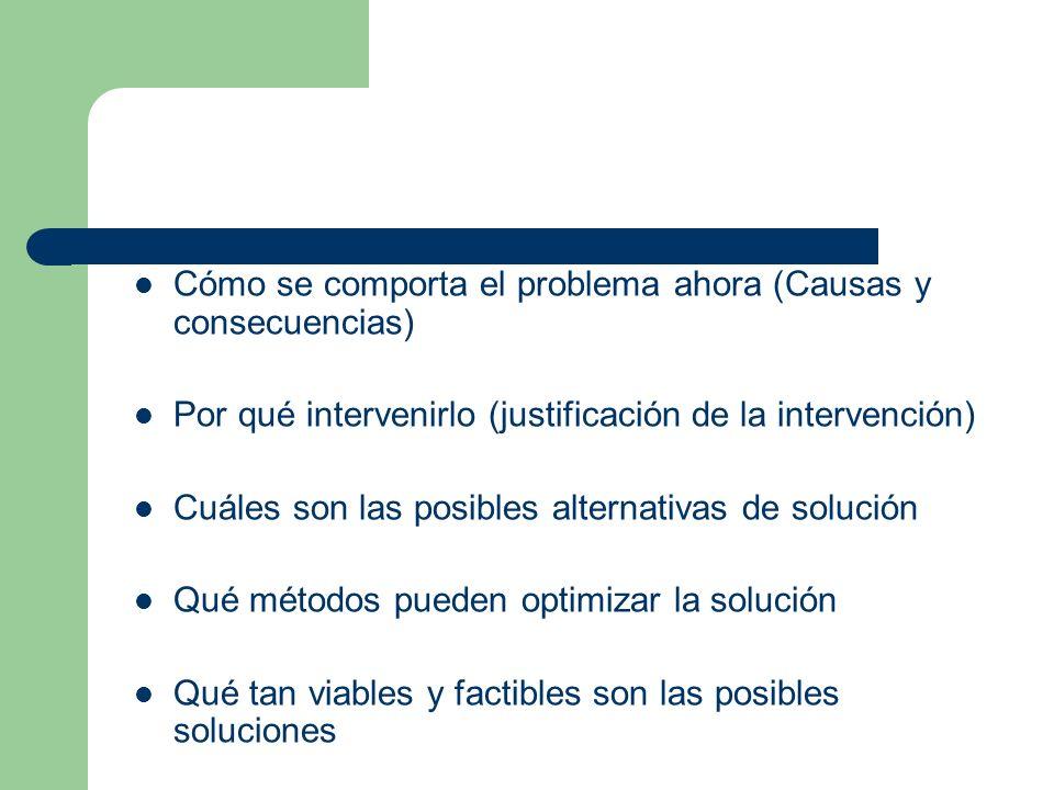 Cómo se comporta el problema ahora (Causas y consecuencias) Por qué intervenirlo (justificación de la intervención) Cuáles son las posibles alternativ