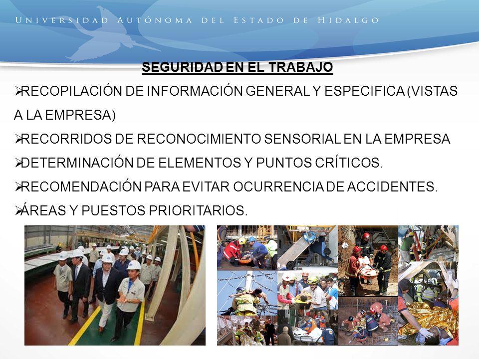 SEGURIDAD EN EL TRABAJO RECOPILACIÓN DE INFORMACIÓN GENERAL Y ESPECIFICA (VISTAS A LA EMPRESA) RECORRIDOS DE RECONOCIMIENTO SENSORIAL EN LA EMPRESA DE