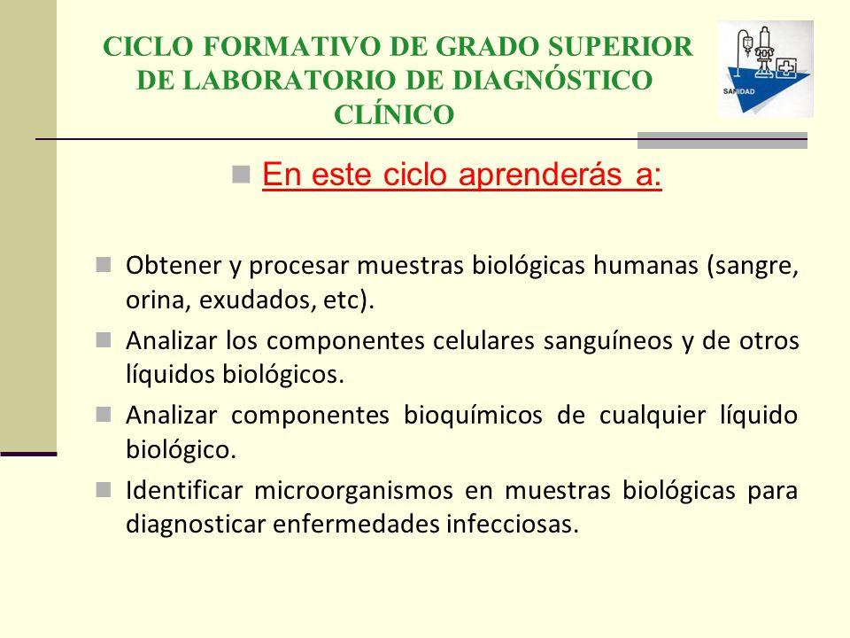 CICLO FORMATIVO DE GRADO SUPERIOR DE LABORATORIO DE DIAGNÓSTICO CLÍNICO En este ciclo aprenderás a: Obtener y procesar muestras biológicas humanas (sa
