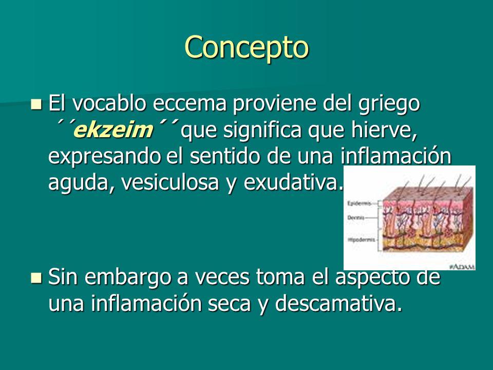 Eccema irritativo de contacto Diagnóstico Diagnóstico -Se basa en una historia clínica completa y detallada.