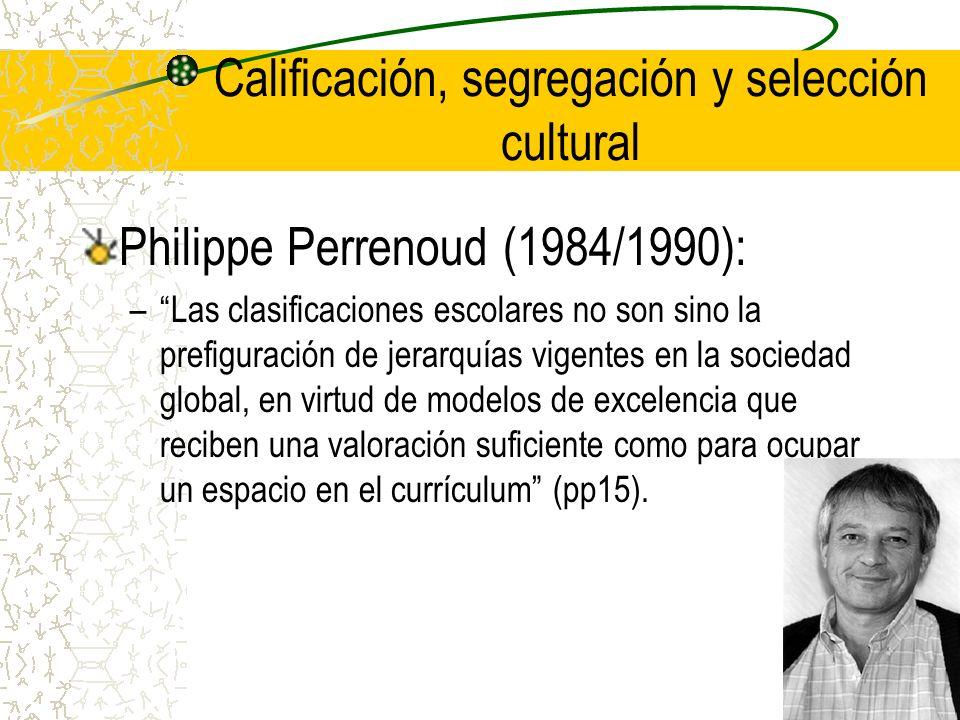 Calificación, segregación y selección cultural Philippe Perrenoud (1984/1990): –Las clasificaciones escolares no son sino la prefiguración de jerarquí