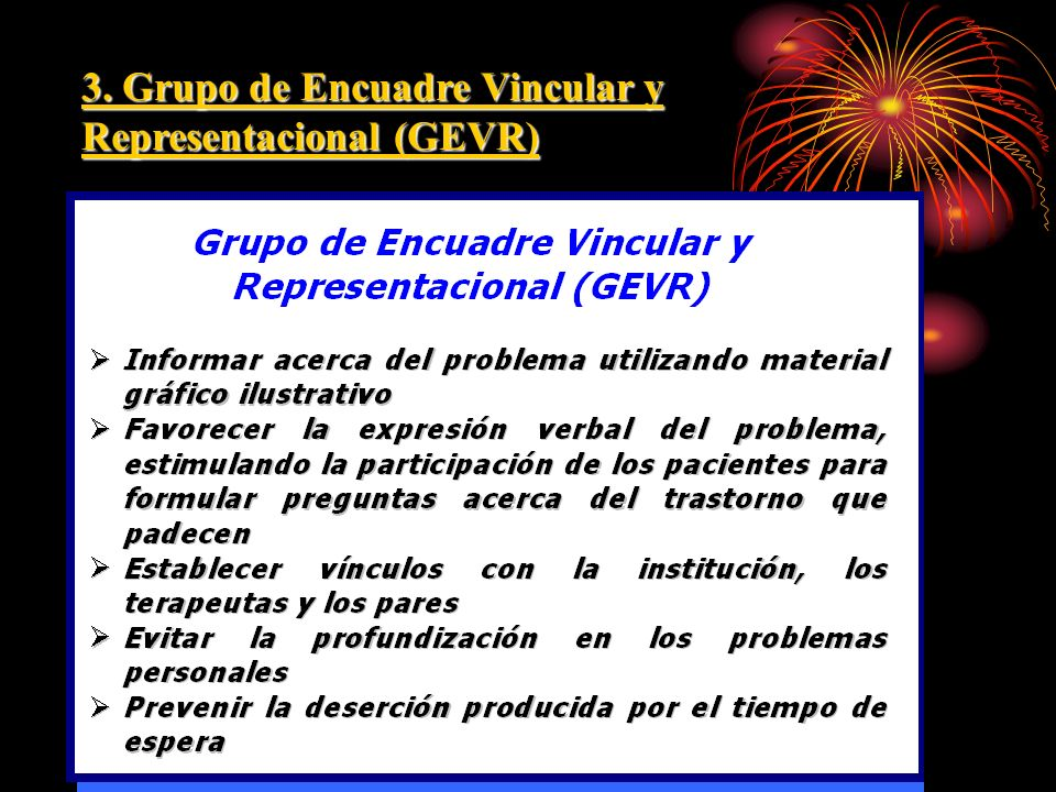 3. Grupo de Encuadre Vincular y Representacional (GEVR)