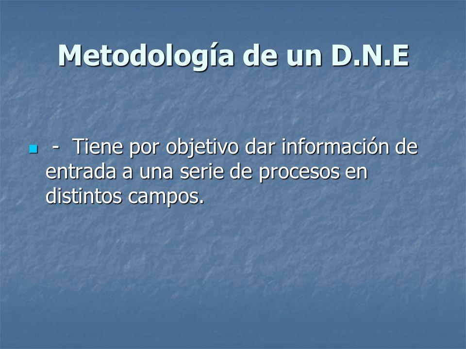 Metodología de un D.N.E - Tiene por objetivo dar información de entrada a una serie de procesos en distintos campos. - Tiene por objetivo dar informac