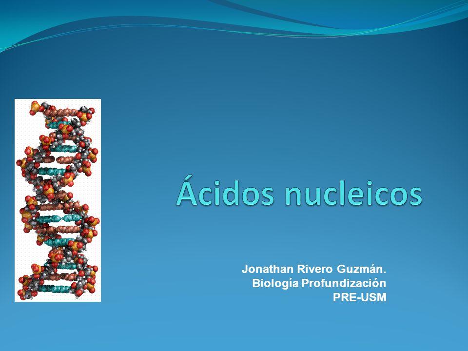 Jonathan Rivero Guzmán. Biología Profundización PRE-USM