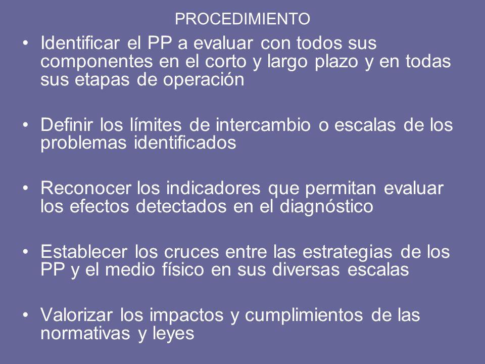 PROCEDIMIENTO Identificar el PP a evaluar con todos sus componentes en el corto y largo plazo y en todas sus etapas de operación Definir los límites d