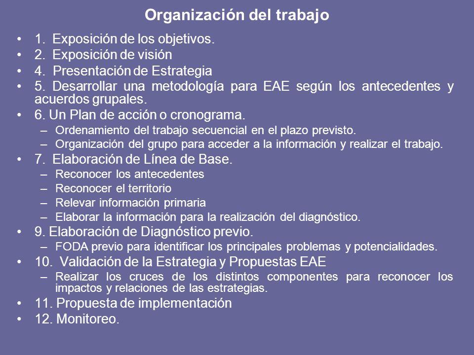 Organización del trabajo 1. Exposición de los objetivos. 2. Exposición de visión 4. Presentación de Estrategia 5. Desarrollar una metodología para EAE