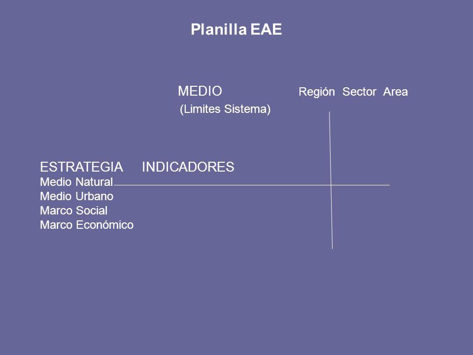 Planilla EAE MEDIO Región Sector Area (Limites Sistema) ESTRATEGIA INDICADORES Medio Natural Medio Urbano Marco Social Marco Económico
