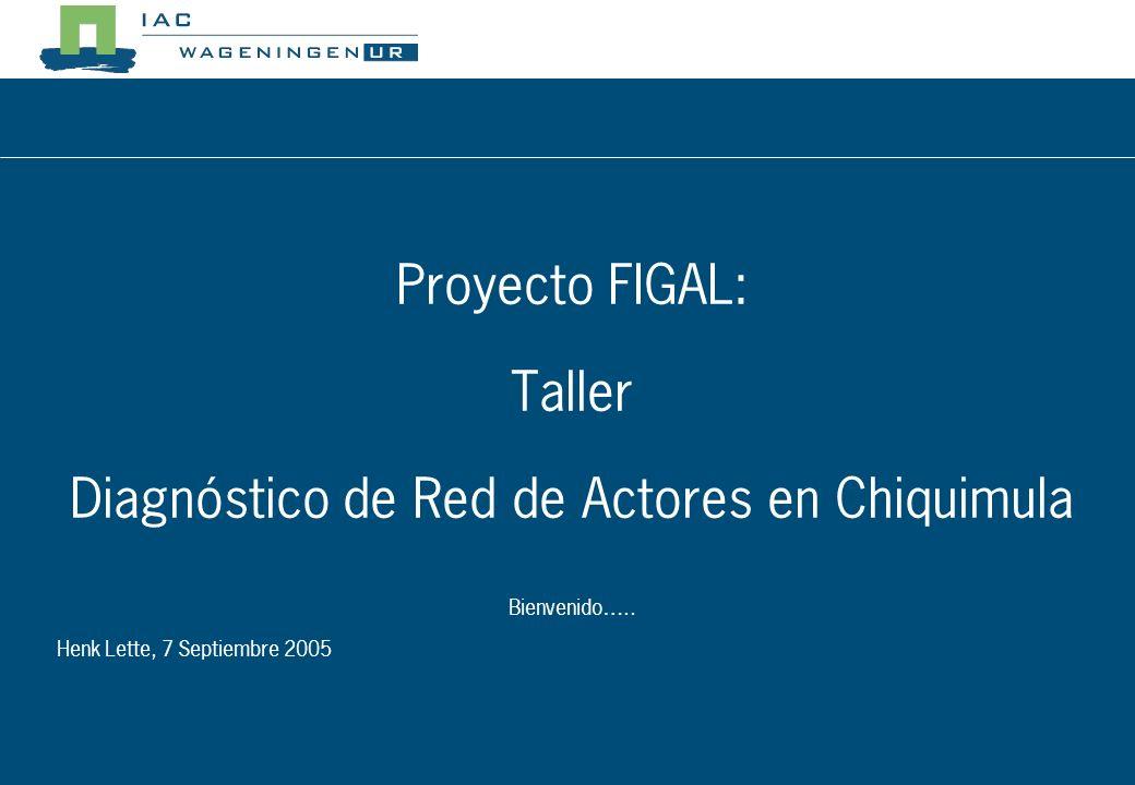Proyecto FIGAL: Taller Diagnóstico de Red de Actores en Chiquimula Bienvenido…..