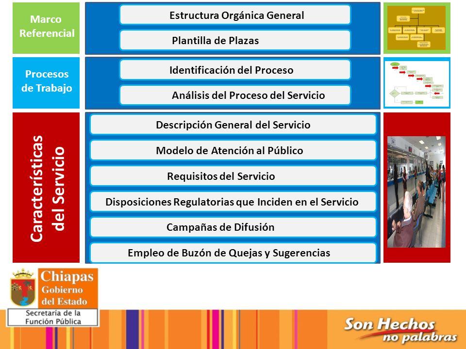 Marco Referencial Estructura Orgánica General Plantilla de Plazas Procesos de Trabajo Identificación del Proceso Análisis del Proceso del Servicio Car