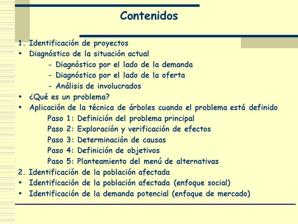 Contenidos 1. Identificación de proyectos Diagnóstico de la situación actual - Diagnóstico por el lado de la demanda - Diagnóstico por el lado de la o