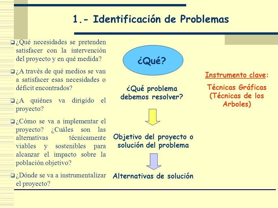 Alternativas de solución ¿Qué? ¿Qué problema debemos resolver? Objetivo del proyecto o solución del problema 1.- Identificación de Problemas Instrumen