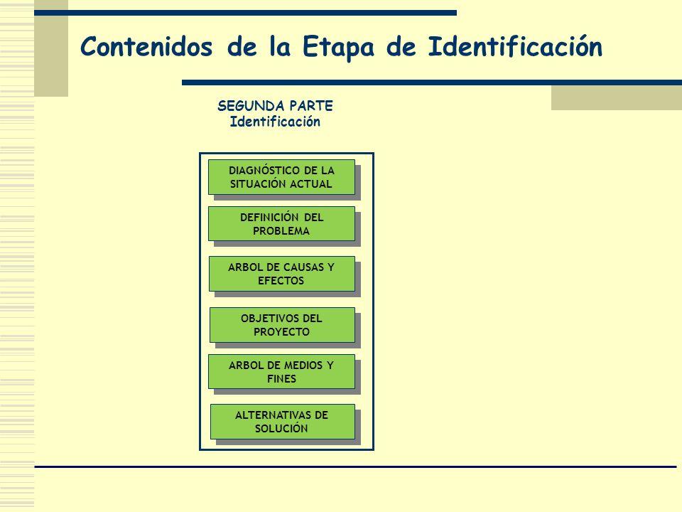 Contenidos de la Etapa de Identificación DIAGNÓSTICO DE LA SITUACIÓN ACTUAL DEFINICIÓN DEL PROBLEMA ALTERNATIVAS DE SOLUCIÓN OBJETIVOS DEL PROYECTO AR
