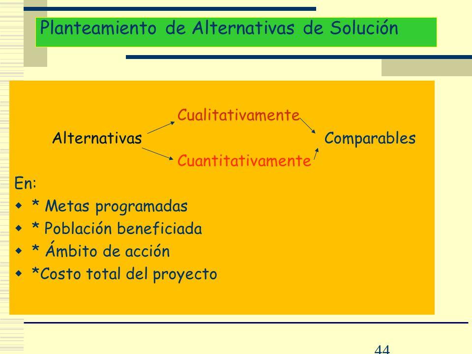 44 Planteamiento de Alternativas de Solución Cualitativamente Alternativas Comparables Cuantitativamente En: * Metas programadas * Población beneficia