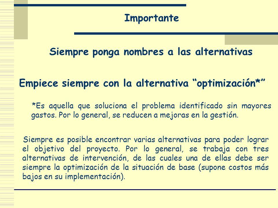 Importante Siempre ponga nombres a las alternativas Empiece siempre con la alternativa optimización* *Es aquella que soluciona el problema identificad