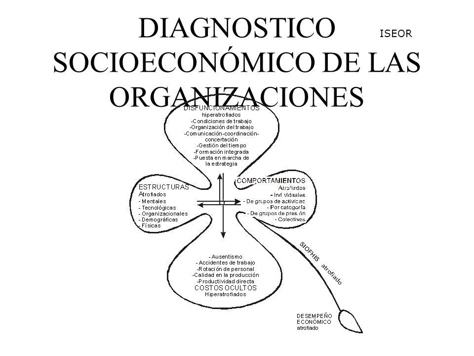 DIAGNOSTICO SOCIOECONÓMICO DE LAS ORGANIZACIONES ISEOR