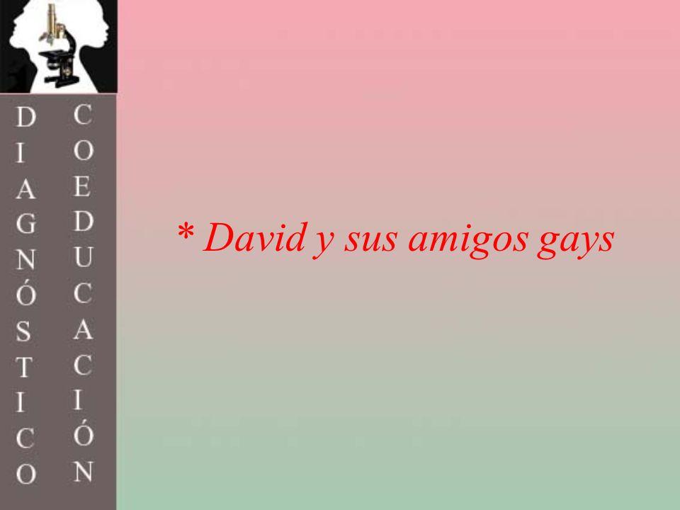 * David y sus amigos gays