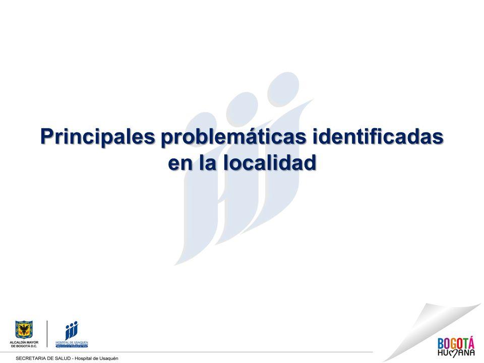Principales problemáticas identificadas en la localidad