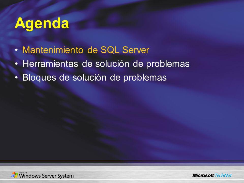 Mantenimiento de SQL Server Registro de errores de SQL Server