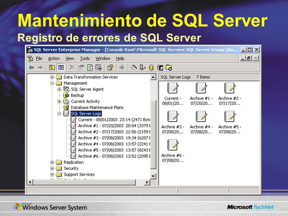Mantenimiento de SQL Server Registro de errores de SQL Server