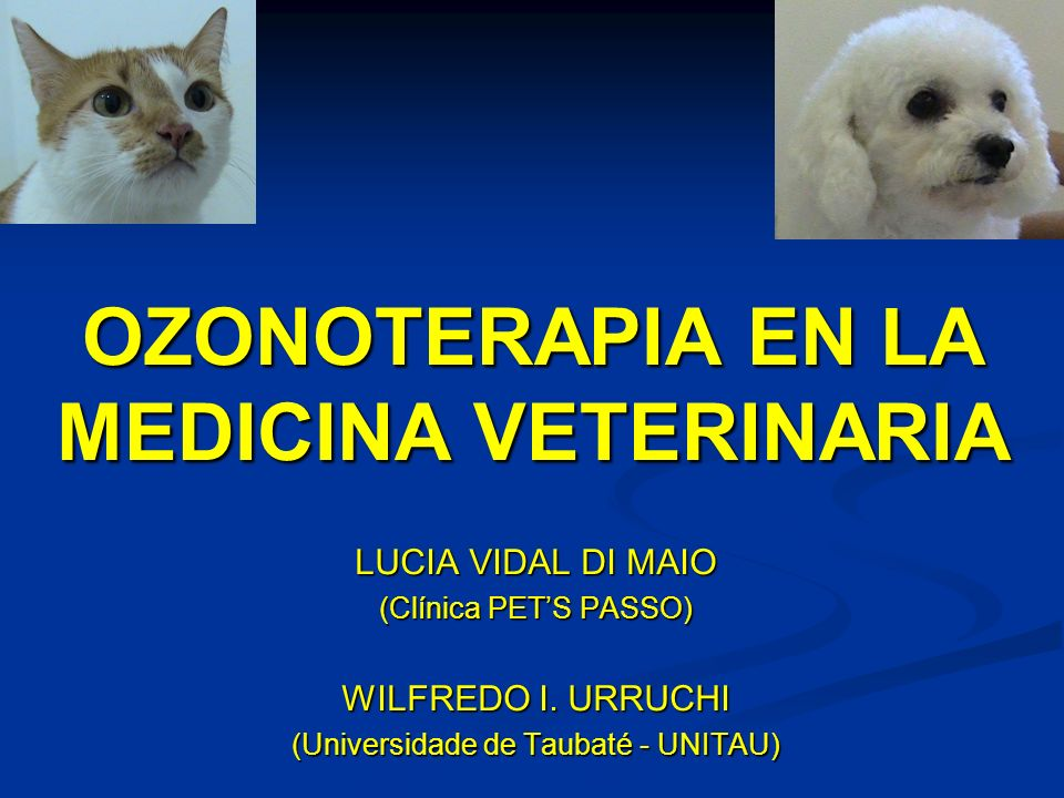 OZONOTERAPIA EN LA MEDICINA VETERINARIA LUCIA VIDAL DI MAIO (Clínica PETS PASSO) WILFREDO I. URRUCHI (Universidade de Taubaté - UNITAU)