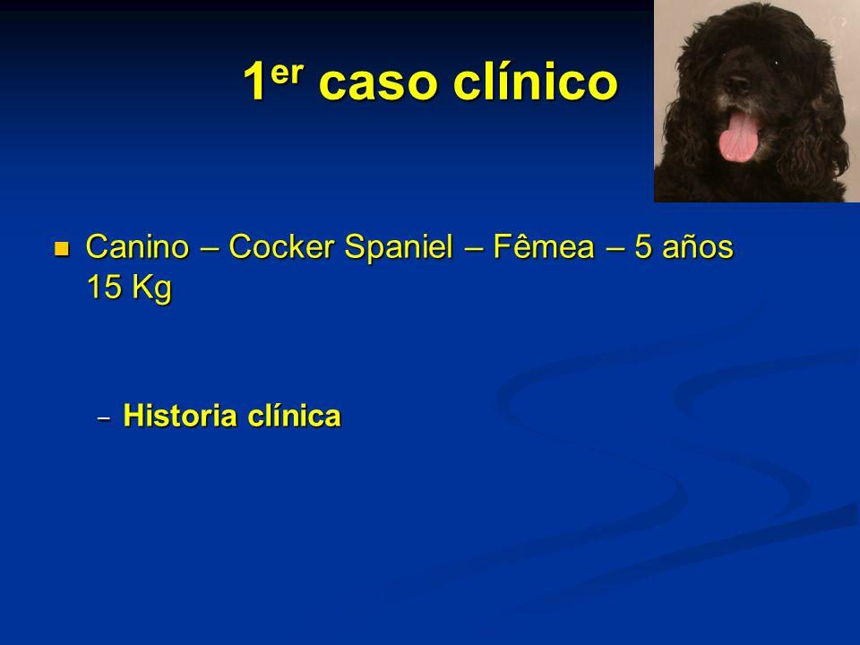 1 er caso clínico Canino – Cocker Spaniel – Fêmea – 5 años 15 Kg Canino – Cocker Spaniel – Fêmea – 5 años 15 Kg Historia clínica Historia clínica