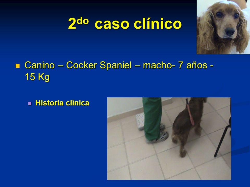 2 do caso clínico Canino – Cocker Spaniel – macho- 7 años - 15 Kg Canino – Cocker Spaniel – macho- 7 años - 15 Kg Historia clínica Historia clínica