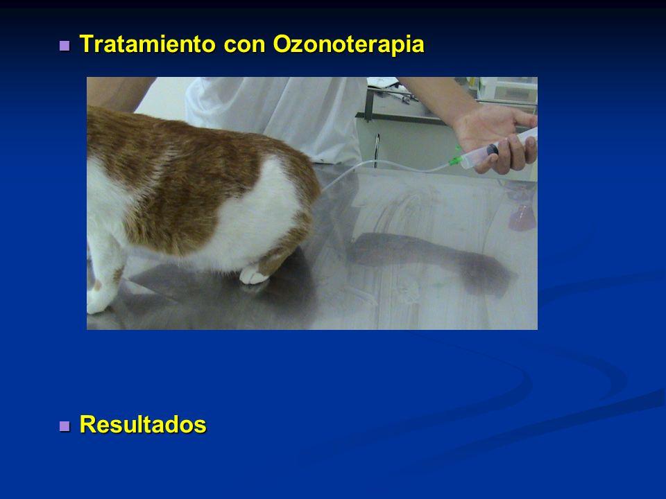 Tratamiento con Ozonoterapia Tratamiento con Ozonoterapia Resultados Resultados