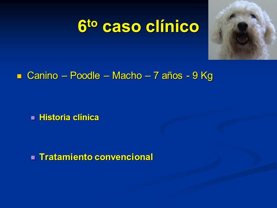 6 to caso clínico Canino – Poodle – Macho – 7 años - 9 Kg Canino – Poodle – Macho – 7 años - 9 Kg Historia clínica Historia clínica Tratamiento convencional Tratamiento convencional