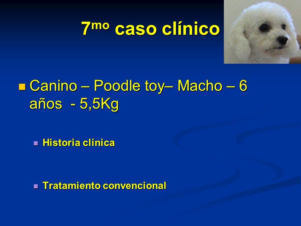 7 mo caso clínico Canino – Poodle toy– Macho – 6 años - 5,5Kg Canino – Poodle toy– Macho – 6 años - 5,5Kg Historia clínica Historia clínica Tratamient