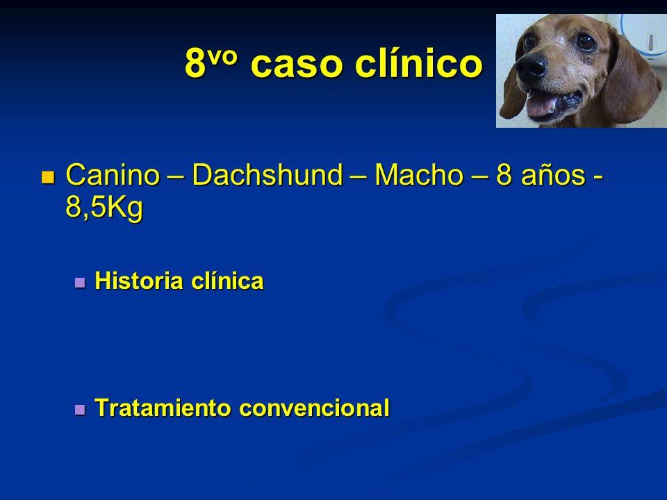 8 vo caso clínico Canino – Dachshund – Macho – 8 años - 8,5Kg Canino – Dachshund – Macho – 8 años - 8,5Kg Historia clínica Historia clínica Tratamiento convencional Tratamiento convencional